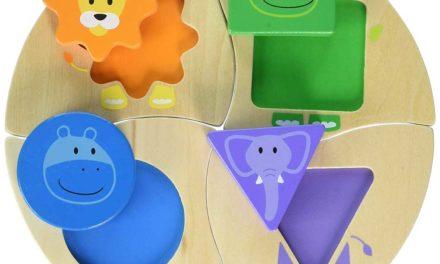 Giocattoli per bambini autistici
